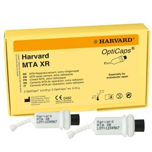 Harvard MTA XR